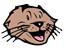 otter_alone